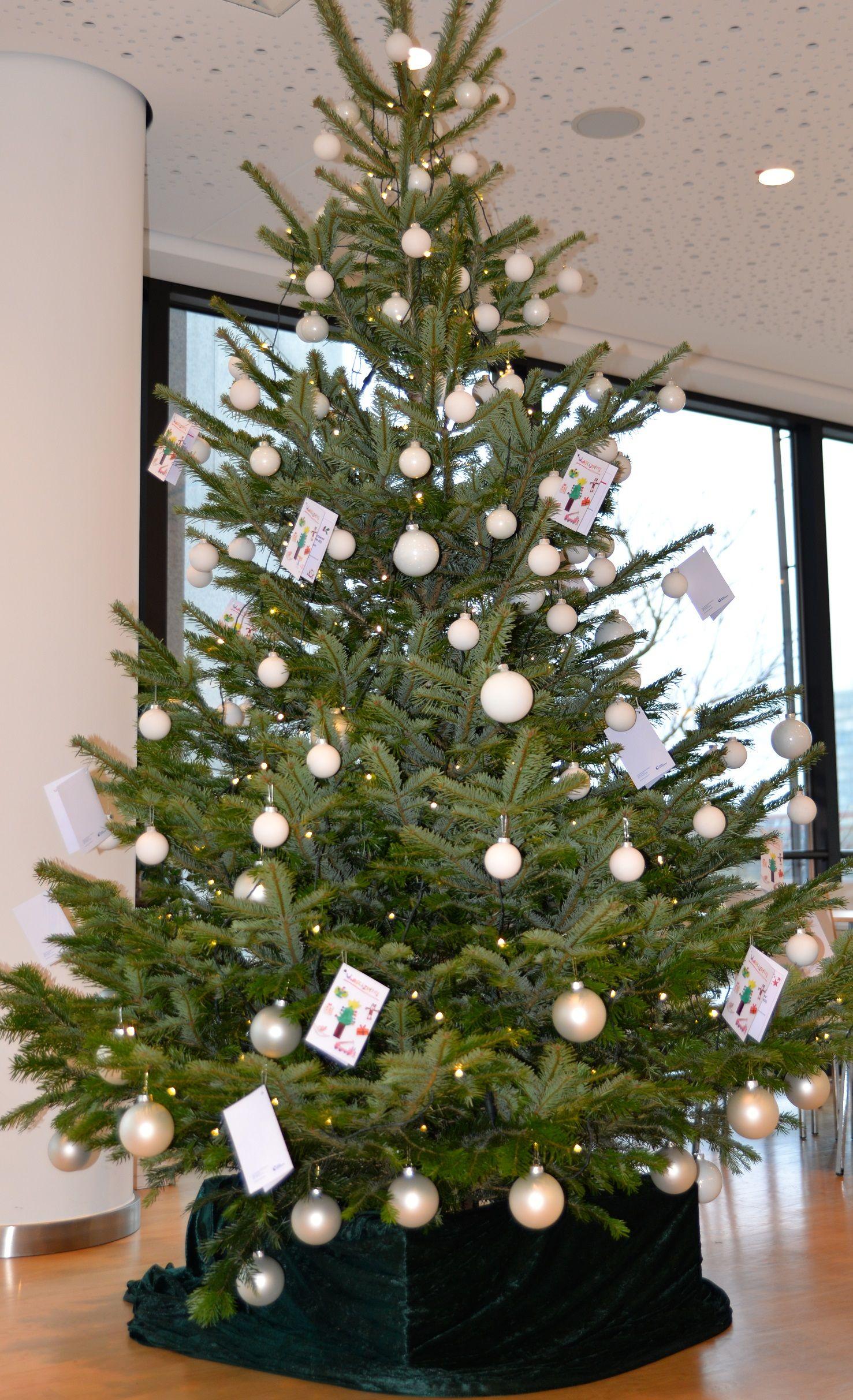 Jedes Jahr übernehmen die BAUMHAUS-Weihnachtsmänner für Sie auf ...