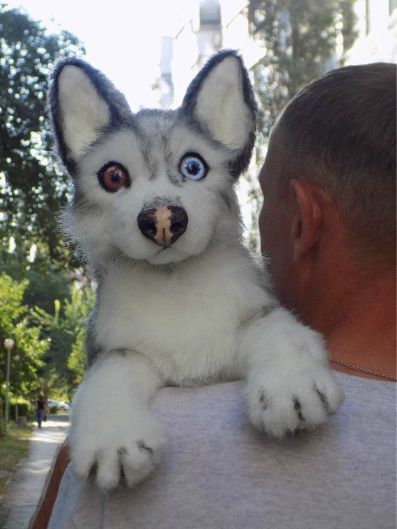 Siberian husky ,scarecrow,Dog,OOAK Handmade gifts, Animal Art Doll, kawaii plush ,poseable doll Small #toydoll