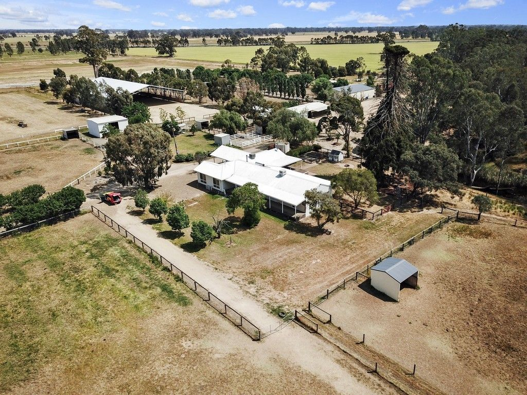 For Sale Exceptional Equine Property 105 Burkes Road Moorilim