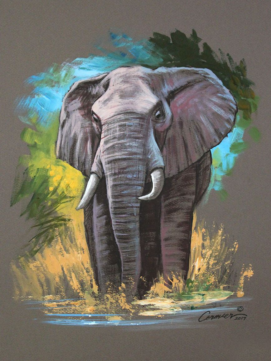Mixed Media Elephant Sketch – Wil Cormier Fine Art Gallery