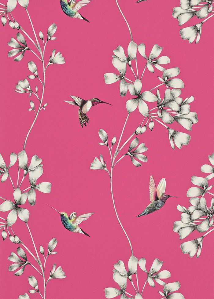 Les Papiers Peints Oiseaux Furniture Wall Coverings
