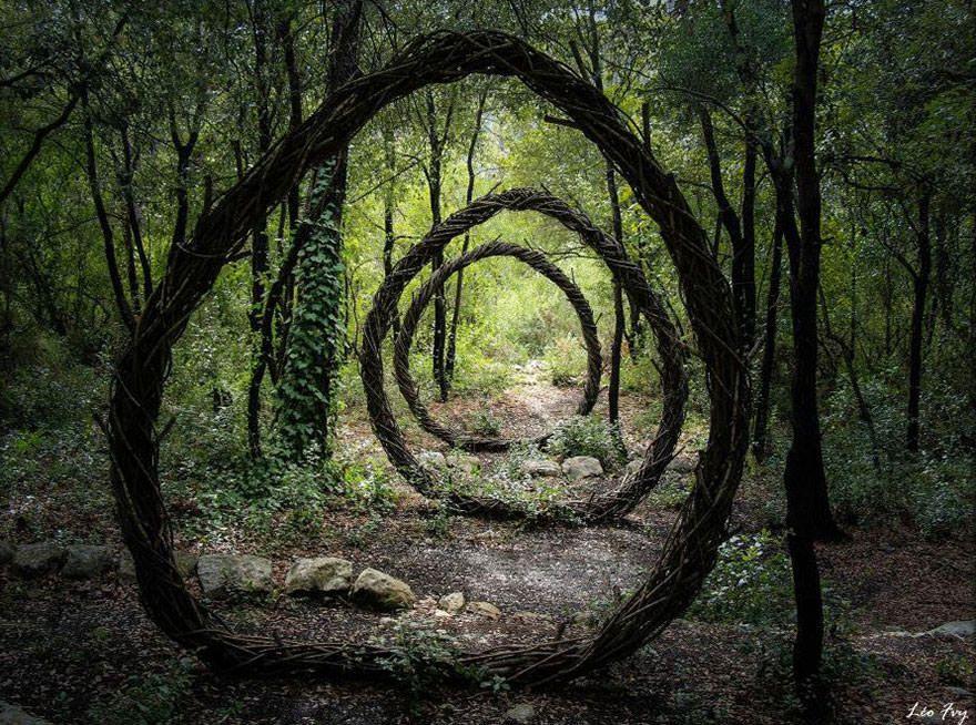 Le sculpteur Spencer Byles a passé un an dans les forêts pour y créer de superbes sculptures à partir de matériaux naturels.