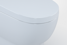 Renwick Back to Wall Toilet - Bathroom Suites | Bathrooms.com