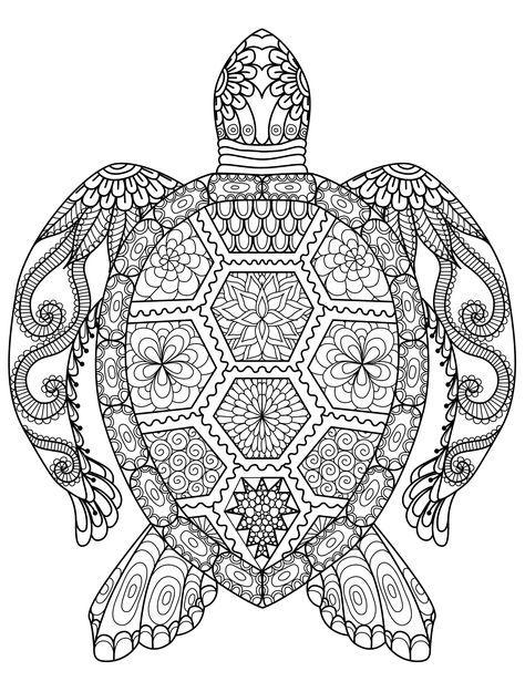 Ausmalbilder Schwer Meeresschildkröte 01 | Ausmalbilder | Pinterest ...