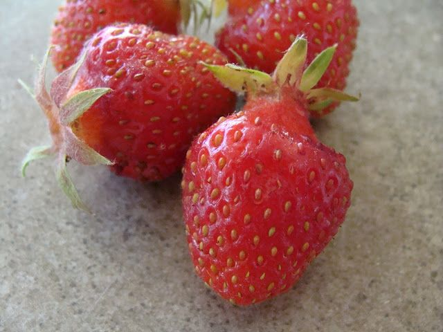All-Star Strawberries - Stark via @Amanda J. Grant