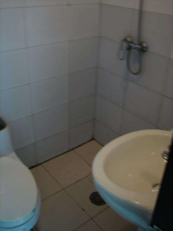 Small Bathroom With Shower Toilet And Sink | Hostel Bathroom..shower, Sink,