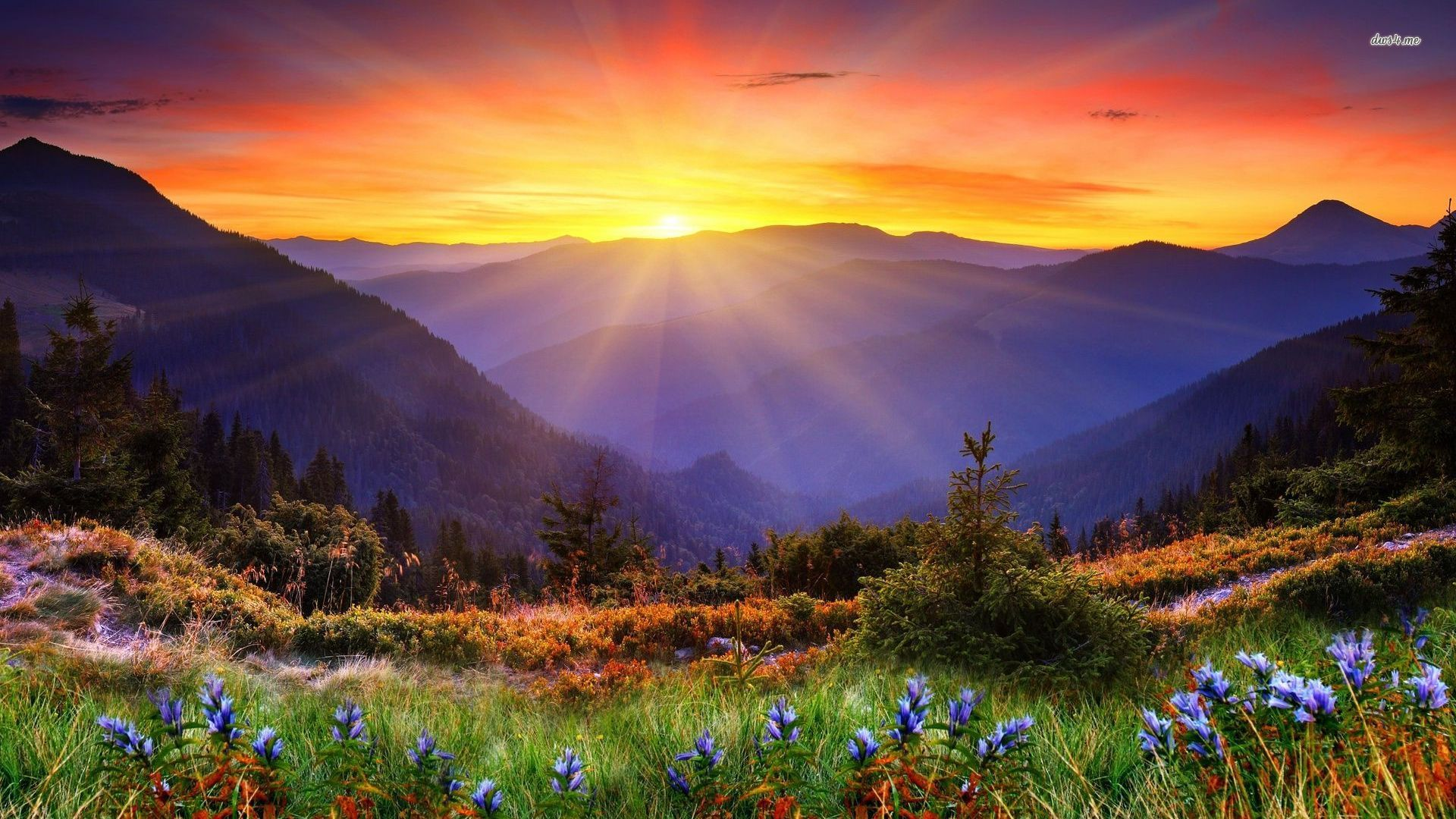 Image for Mountain Sunrise Download Wallpaper | Favorite ...