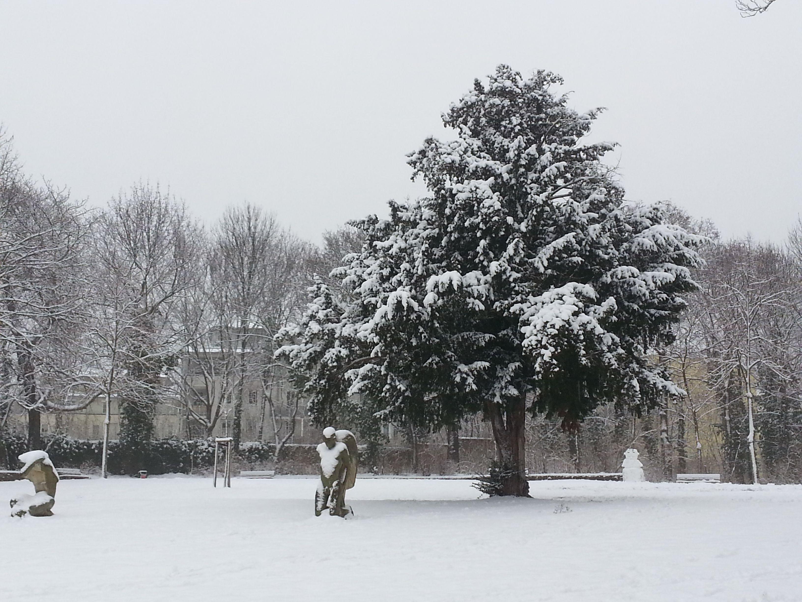 Winter Jan 2015