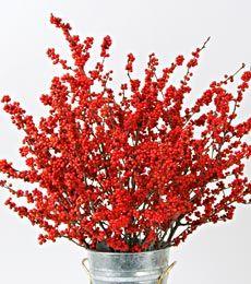 winterberry decor