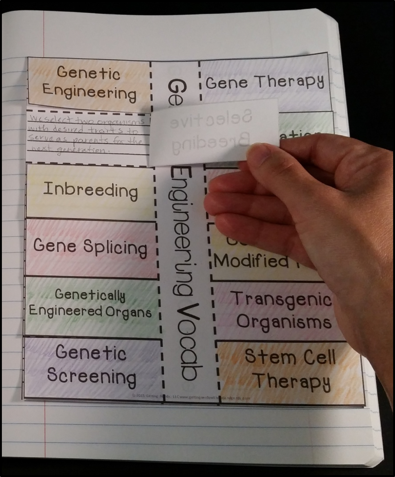Science Design For Notebook: Science Interactive Notebook Activities