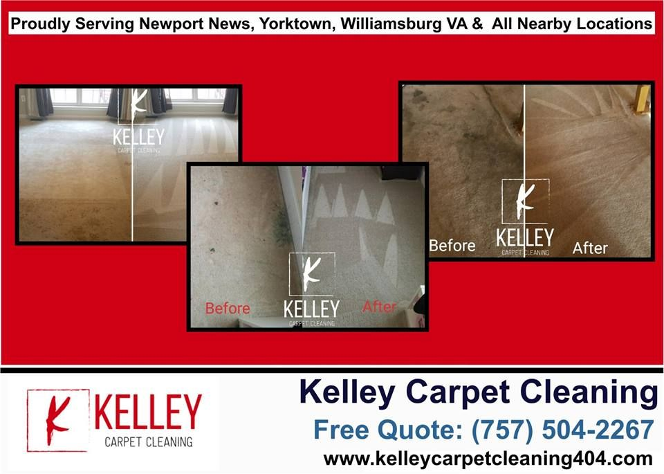 5 Star Rating I Would Recommend This Company To Anyone In Need Of With Images How To Clean Carpet Safe Cleaning Products Carpet Cleaning Company