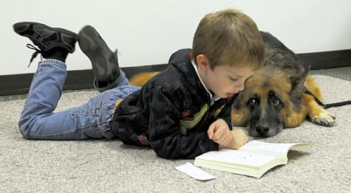 Therapy Dog Helping A Child Practice His Reading I Love It When