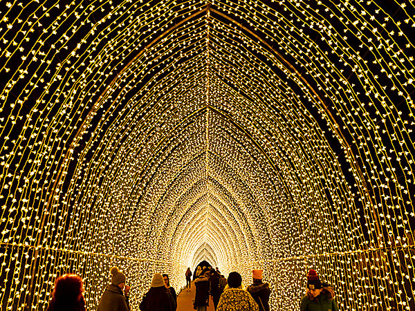 Lightscape Chicago Botanic Garden Holiday pops, Light