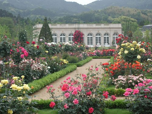Bagatelle Rose Garden In Paris Rose Garden Landscape Exquisite Gardens French Garden