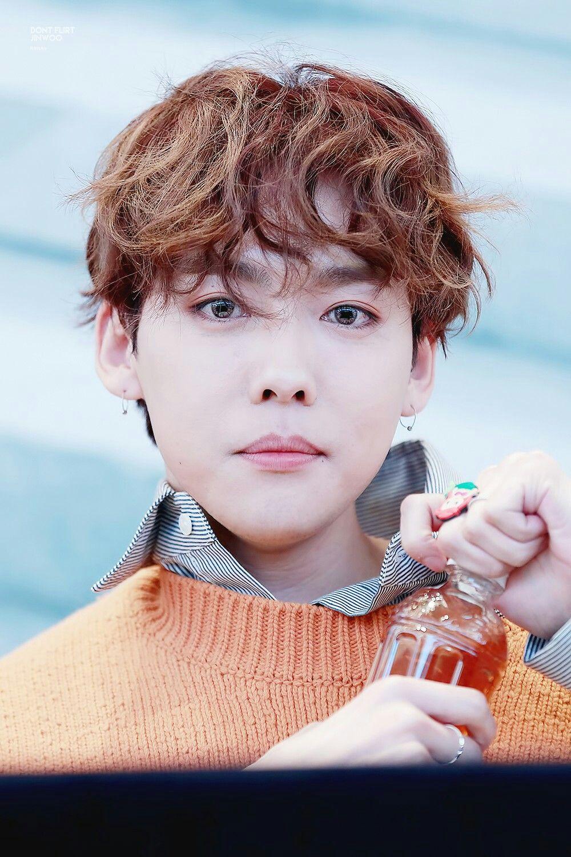 Winner kim jin woo