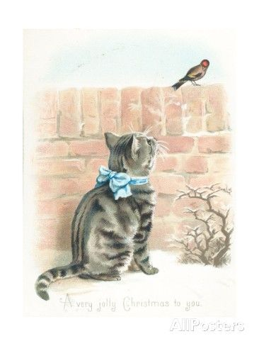 Tabby Cat Watching Finch on Wall, Christmas Card Giclee-vedos AllPosters.fi-sivustossa