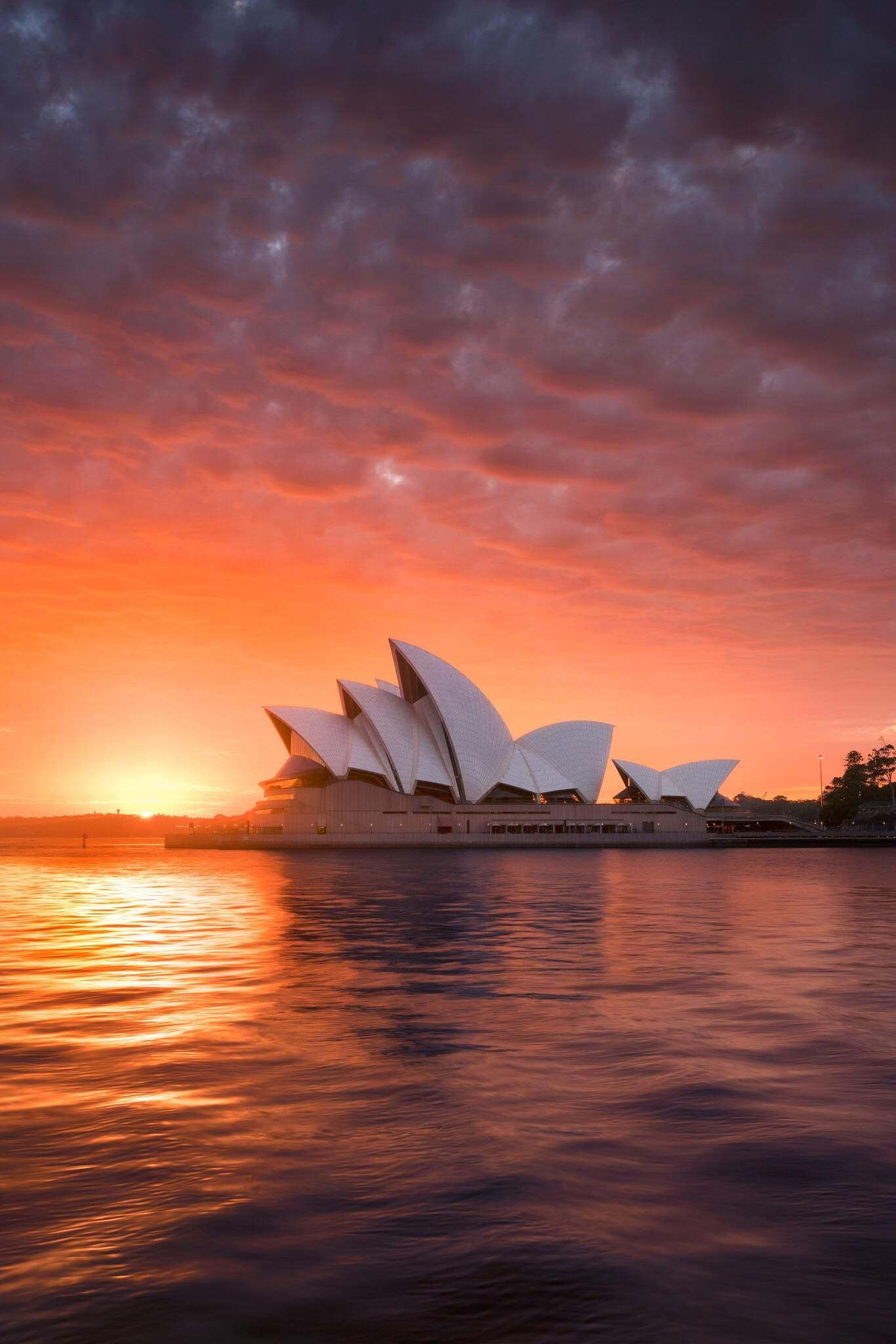 Sydney harbour lighting it up [OC][1326x2048