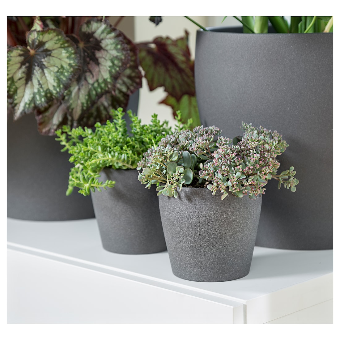 Persillade Plant Pot Dark Gray 4 Ikea Potted Plants Flower Pots Indoor Plant Pots