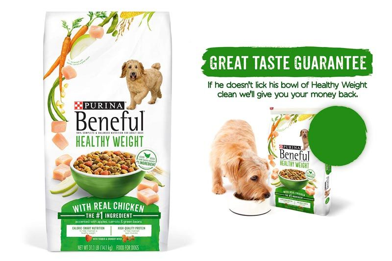 Best Dog Food For French Bulldogs 10 Reviews Skin Allergies
