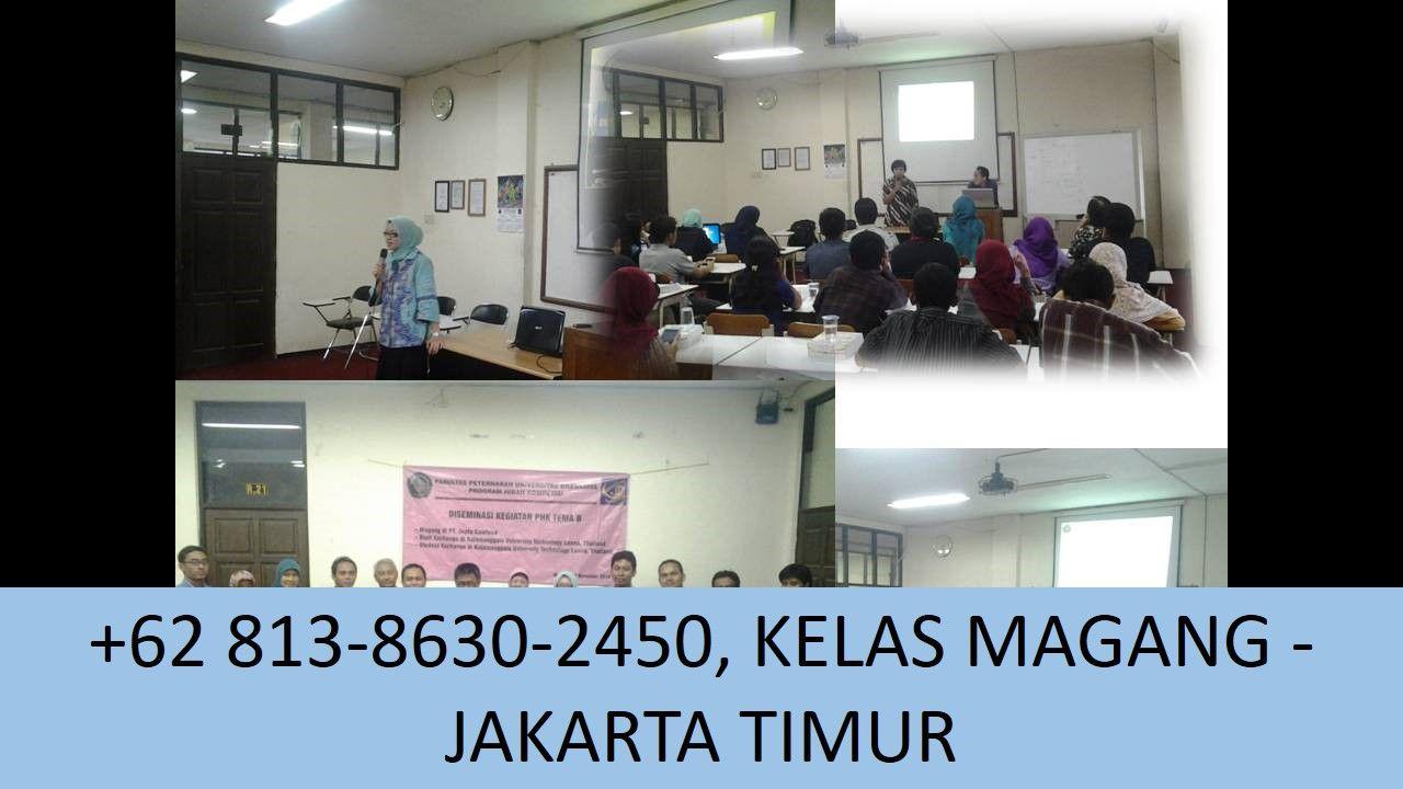 Wa 62 813 8630 2450 Industri Magang Sekitar Jakarta Timur Pemasaran Anak Marketing