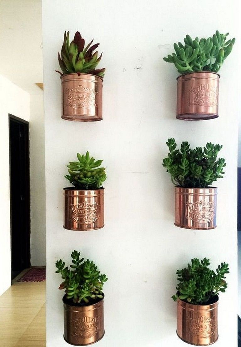 30 Awesome Small Wall Plants Ideas For Indoor Homedecor Homedesign Homedecorideas Plant Wall Decor Wall Planters Indoor Indoor Plant Wall