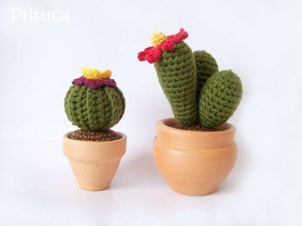 Cactus Arredamento ~ Best cactus images cacti cactus craft and