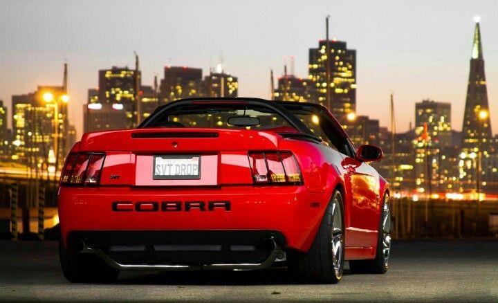 03 04 Cobra Svt Drop Ford Mustang Cobra Mustang Cobra Red Mustang