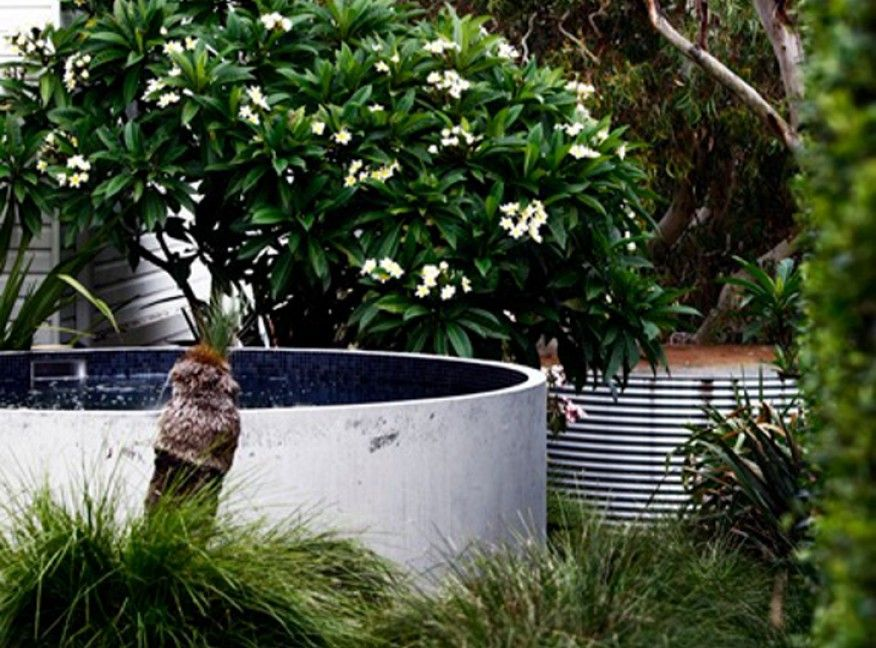 I wish plunge pool from australian plunge pools house for Garden plunge pool