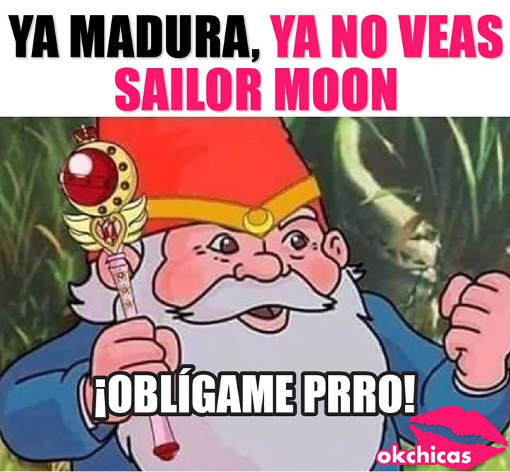 Te Castigare En El Nombre De La Luna Prro Memes Divertidos Imagenes Graciosas Memes Graciosos