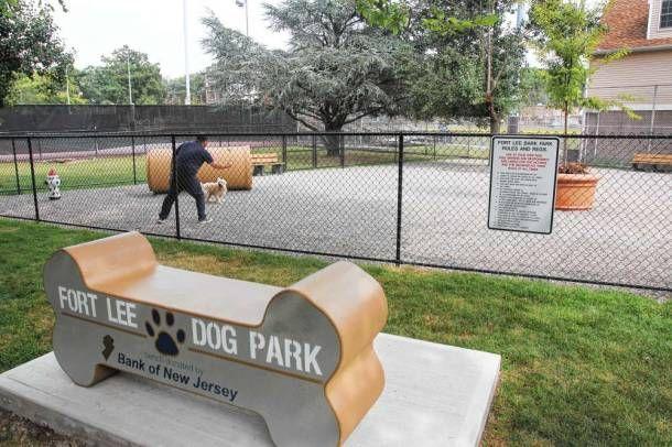 Pin By Bergencounty Com On Bergen County Pets Dog Park Dog