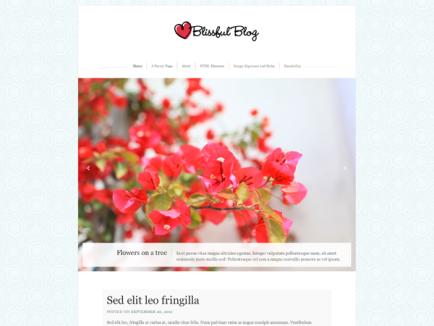Manage Themes ‹ Spiritual Journey ღ — WordPress