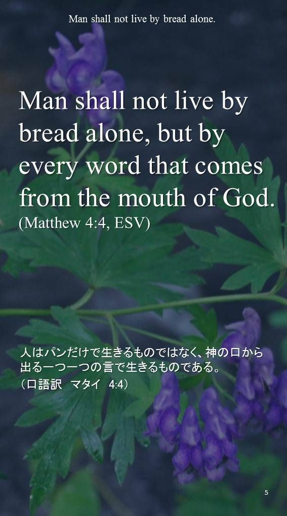 Man shall not live by bread alone, but by every word that