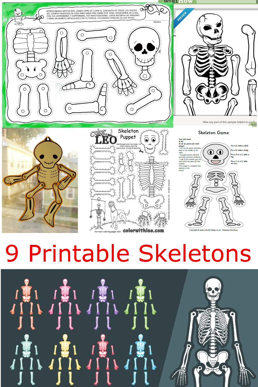 9 Printable Skeleton Crafts Printables 4 Mom Skeleton Craft Skeleton For Kids Human Skeleton For Kids [ 1500 x 1000 Pixel ]