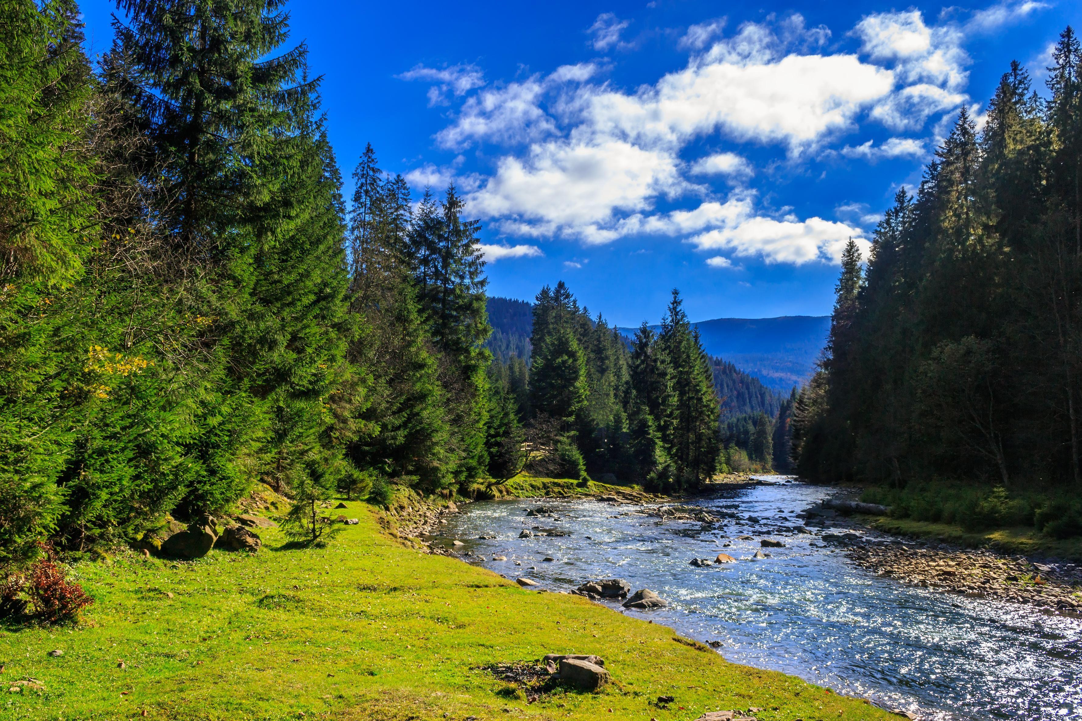 Colorado River Porn - Blue River at Pebble Creek Ranch in Silverthorne Colorado