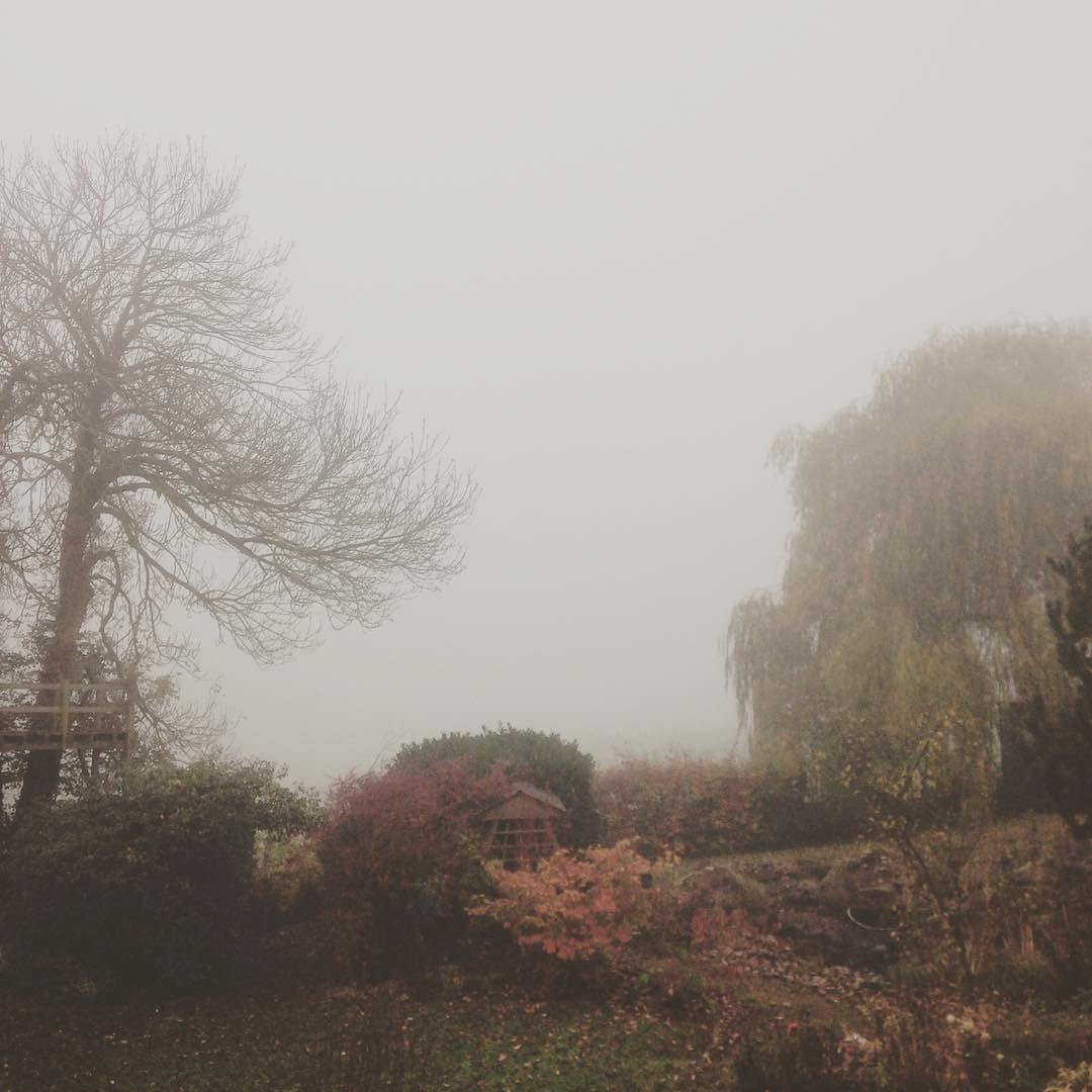All fog errything. by ejmartin