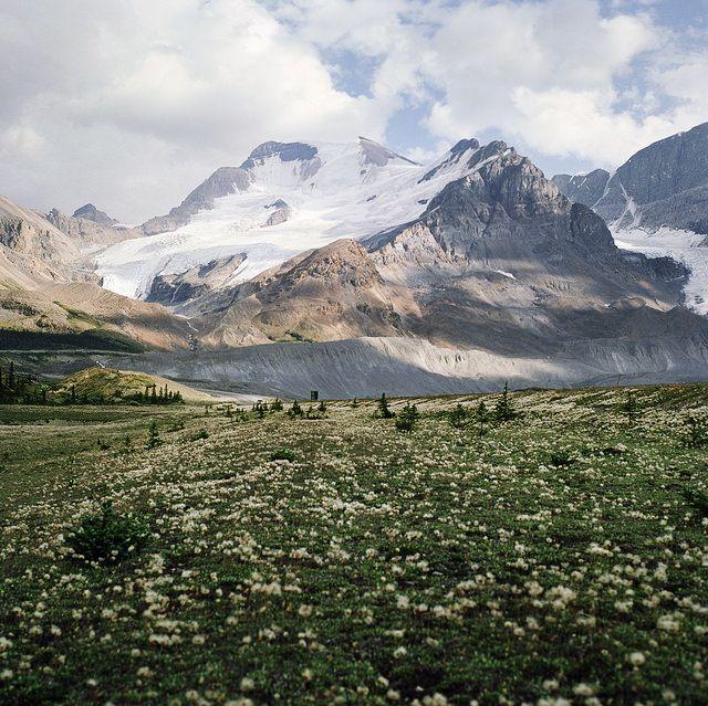 Honeymoon Destinations Rocky Mountains: Atardeceres Hermosos, Paisajes