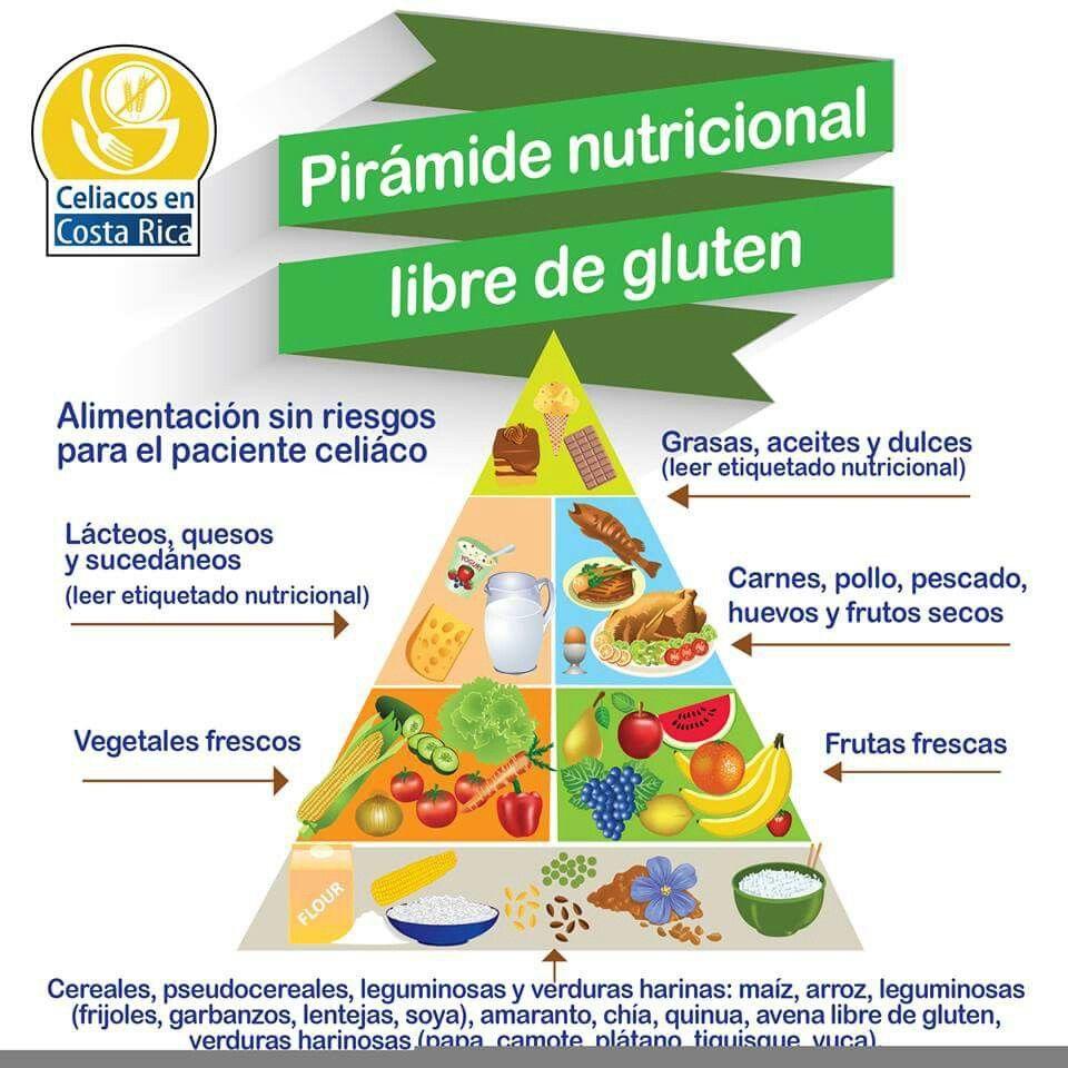 Piramide Nutricional Libredegluten Piramide Nutricional