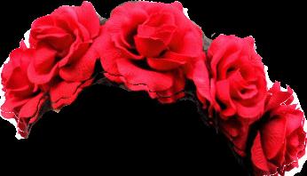 red rose flower crown Красивые аниме рисунки, Рисунок