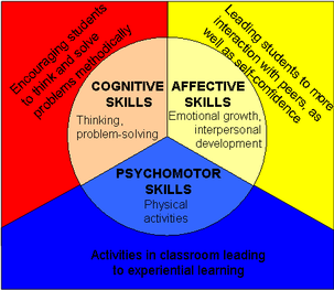 Learning Domains Cbl Learning Theory Cognitive Domain Student Skills