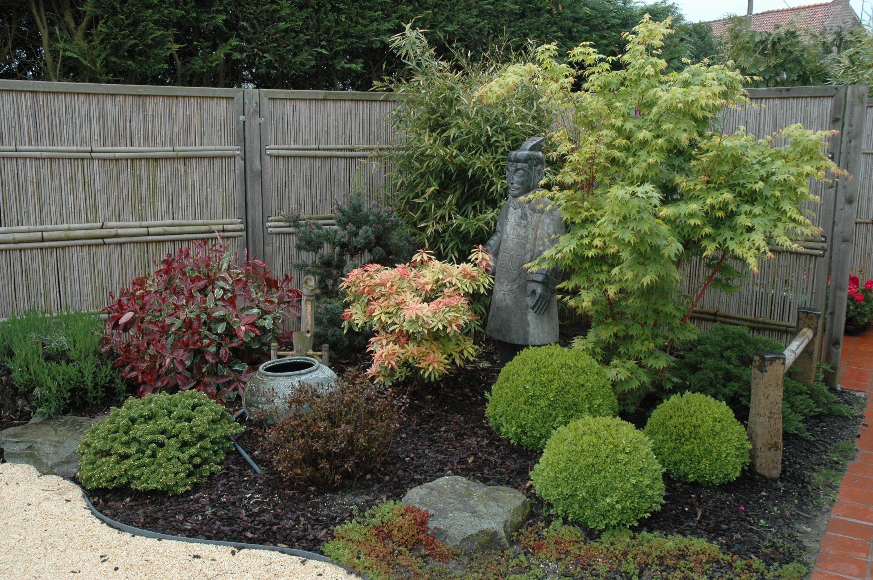 Pin by Girard on Jardin japonais | Pinterest | Gardens