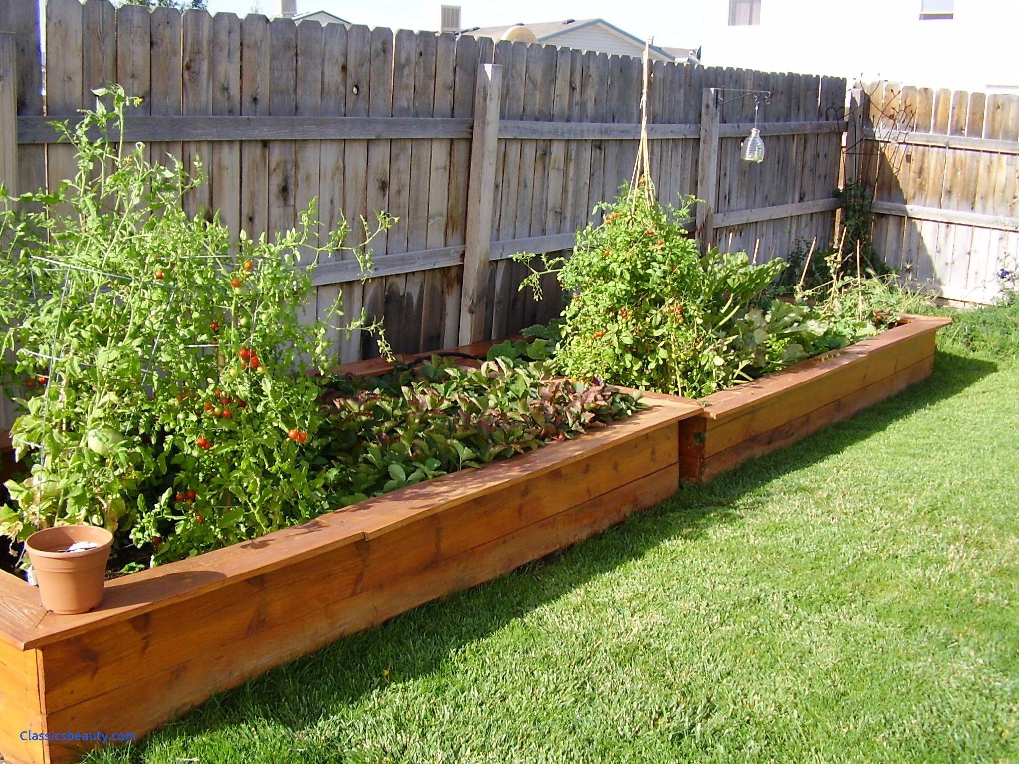Backyard planters inspirational lawn garden ve able