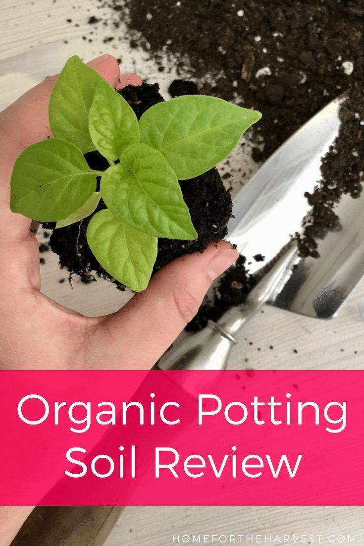 Pro Mix Review: The Best Organic Potting Soil For Vegetable Gardening |  Potting Soil, Organic And Organic Gardening