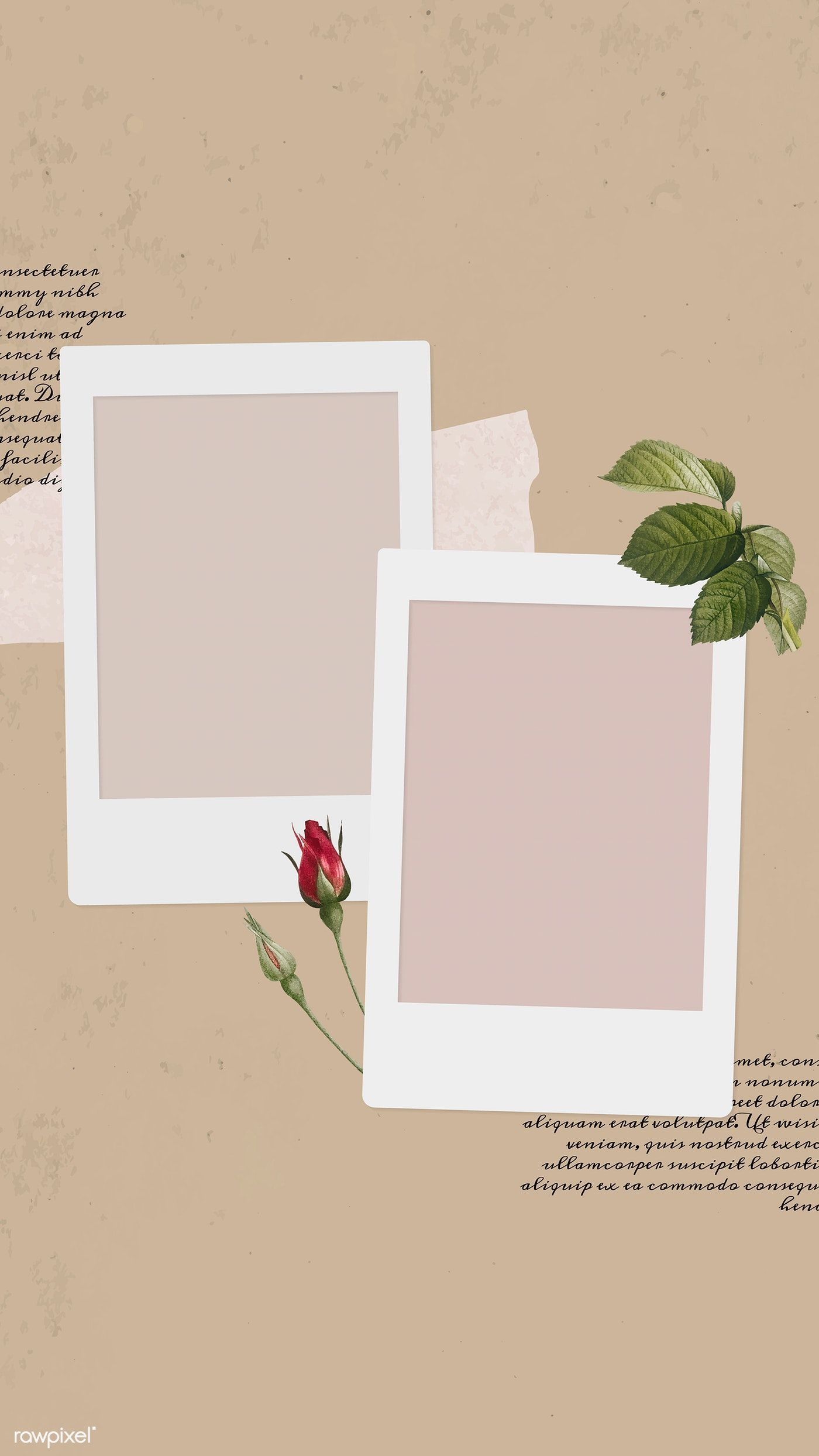 Download premium vector of Blank collage photo frame template vector mobile phone wallpaper by Ning about pastel flowers, Blank collage photo frame template vector, texture flower frame illustration design, collage, and Blank collage photo frame copy space 1217680