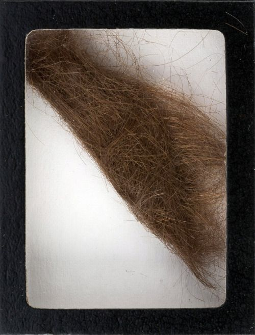 Lee como lo consiguieron | Subastan mechón de cabello de John...