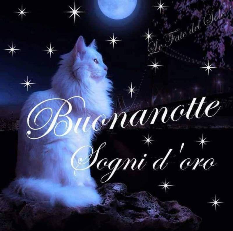 Immagini Belle Buonanotte Per Whatsapp Da Scaricare Gratis