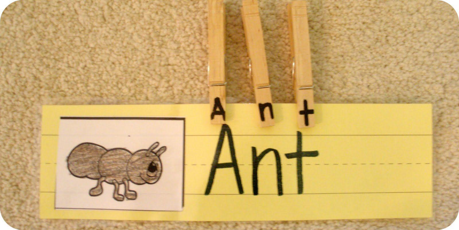 Bug Word Clips