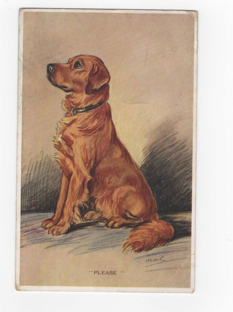 Golden Retriever Vintage Dog Postcard Tailwagger Mac Lucy Dawson