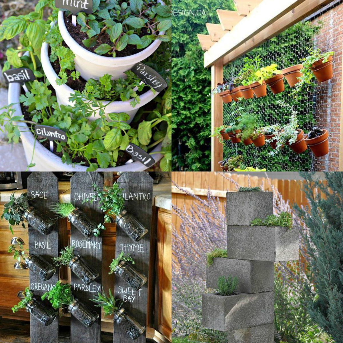 4 jardins em miniatura estilosos para ter em casa | fotos ...