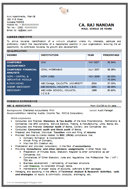 beautiful resume format in word doc with excellent vacab 1