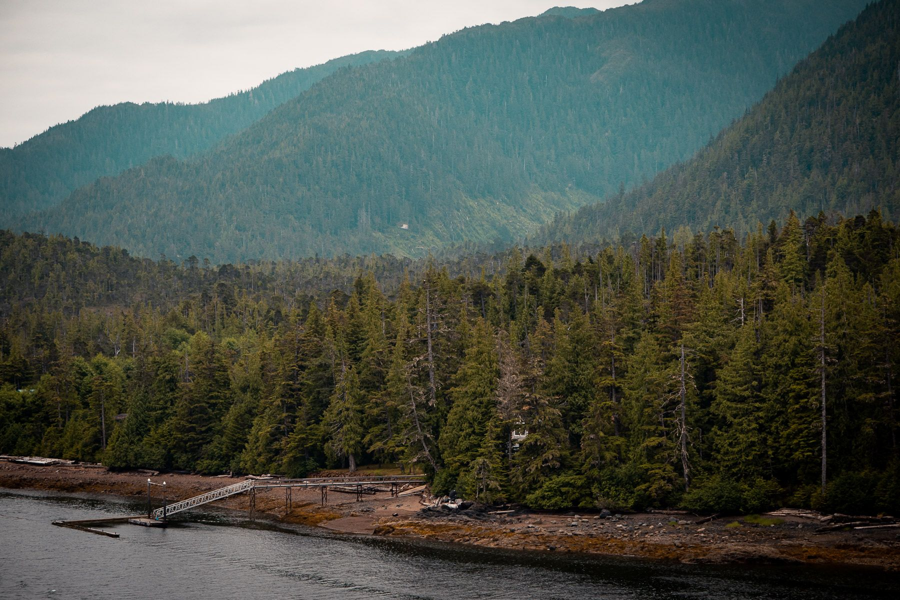 Houses along the shore of the Tongass Narrows near